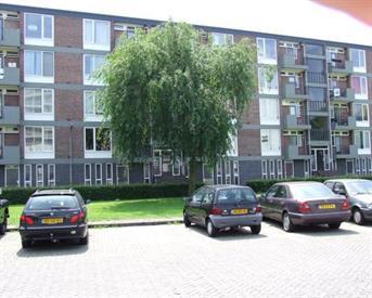 Kamer in Tilburg, Tobias Asserlaan op Kamernet.nl: Mooie zonnige en rustige kamer