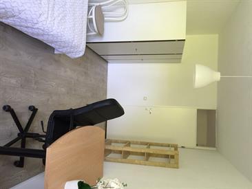 Kamer in Delft, Stille Putten op Kamernet.nl: Nette gestoffeerde, gemeubileerde kamer.