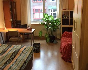 Kamer in Groningen, W.A. Scholtenstraat op Kamernet.nl: Kamer voor onderhuur gedurende 1 jaar