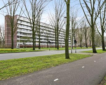 Kamer in Delft, Herman Gorterhof op Kamernet.nl: 3-kamer appartment voor 3 studenten