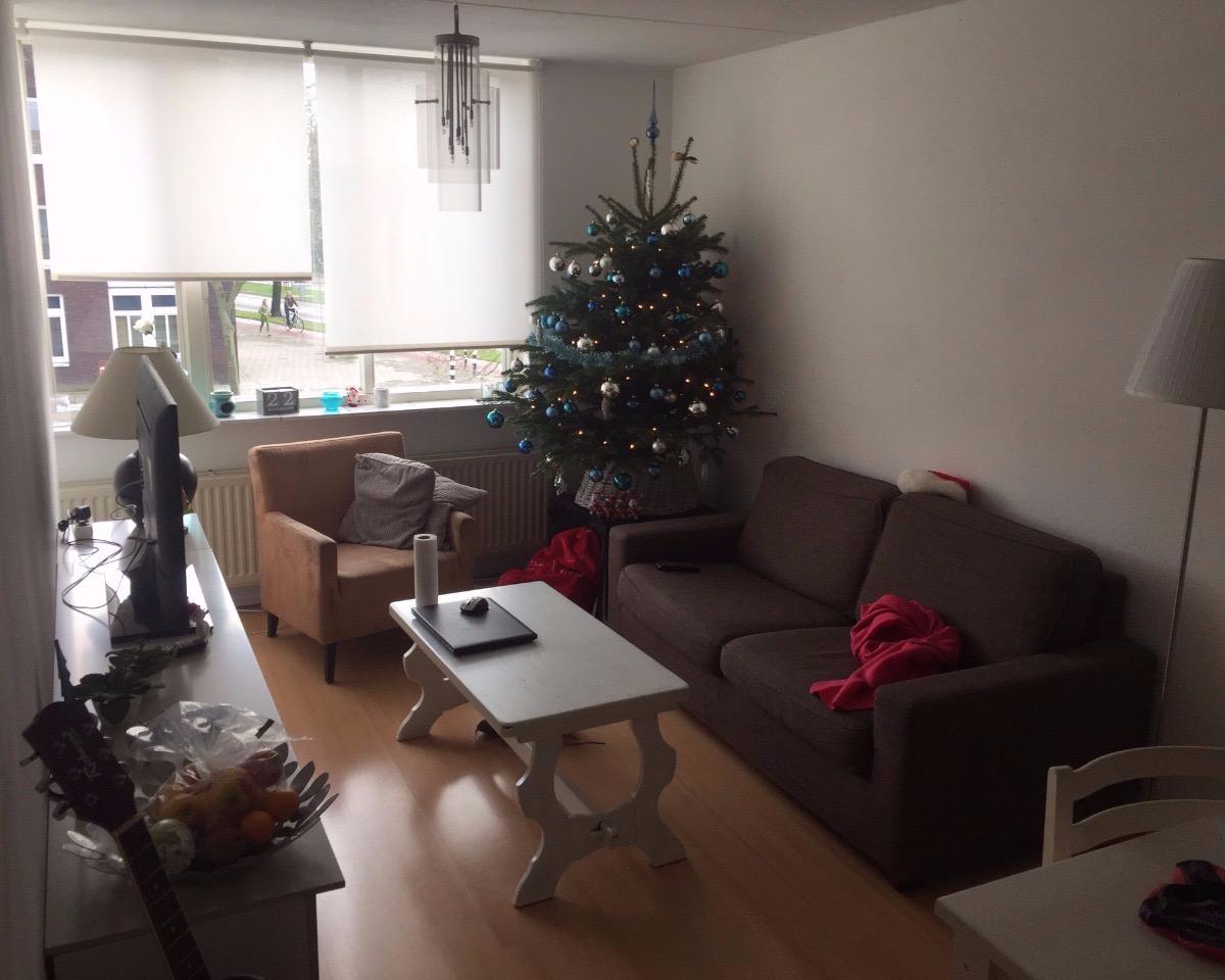 Kamer aan Gabriel Metsulaan in Eindhoven