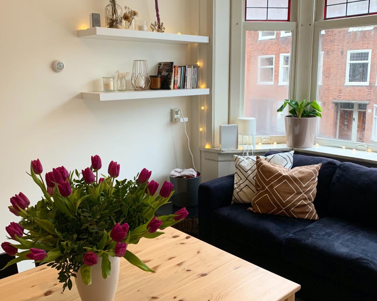 Kamer te huur in de Kribbestraat in Amsterdam