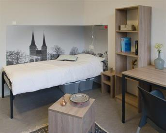 Kamer in Delft, Prof. Schermerhornstraat op Kamernet.nl: Perfectly located Cozy Room for Rent in Delft