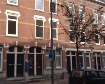 Kamer in Rotterdam, Ruilstraat op Kamernet.nl: Appartement met tuin in harte rotterdam