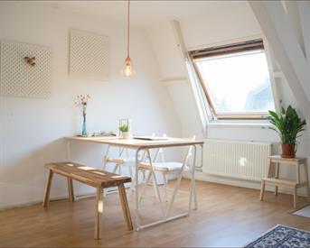 Kamer in Utrecht, Havikstraat op Kamernet.nl: bright and cozy apartment