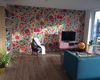 Kamer in Amersfoort, Evenaar op Kamernet.nl: Mooi appartement op loopafstand binnenstad