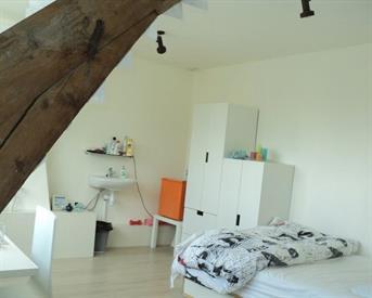 Kamer in Breda, Wilhelminasingel op Kamernet.nl: Ruime lichte kamer op toplocatie