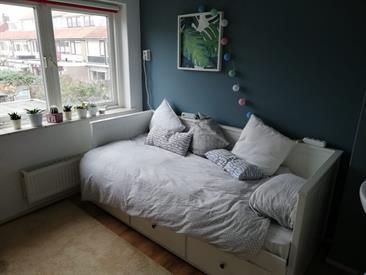Kamer in Alkmaar, Graaf Jankade op Kamernet.nl: Wij zijn op zoek naar een gezellige huisgenoot.
