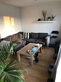 Kamer in Utrecht, Johannes Camphuysstraat op Kamernet.nl: Sfeervol 2-kamer appartement in Lombok