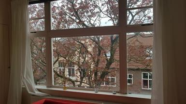 Kamer in Groningen, Padangstraat op Kamernet.nl: ruime lichte woonkamer op goede locatie.
