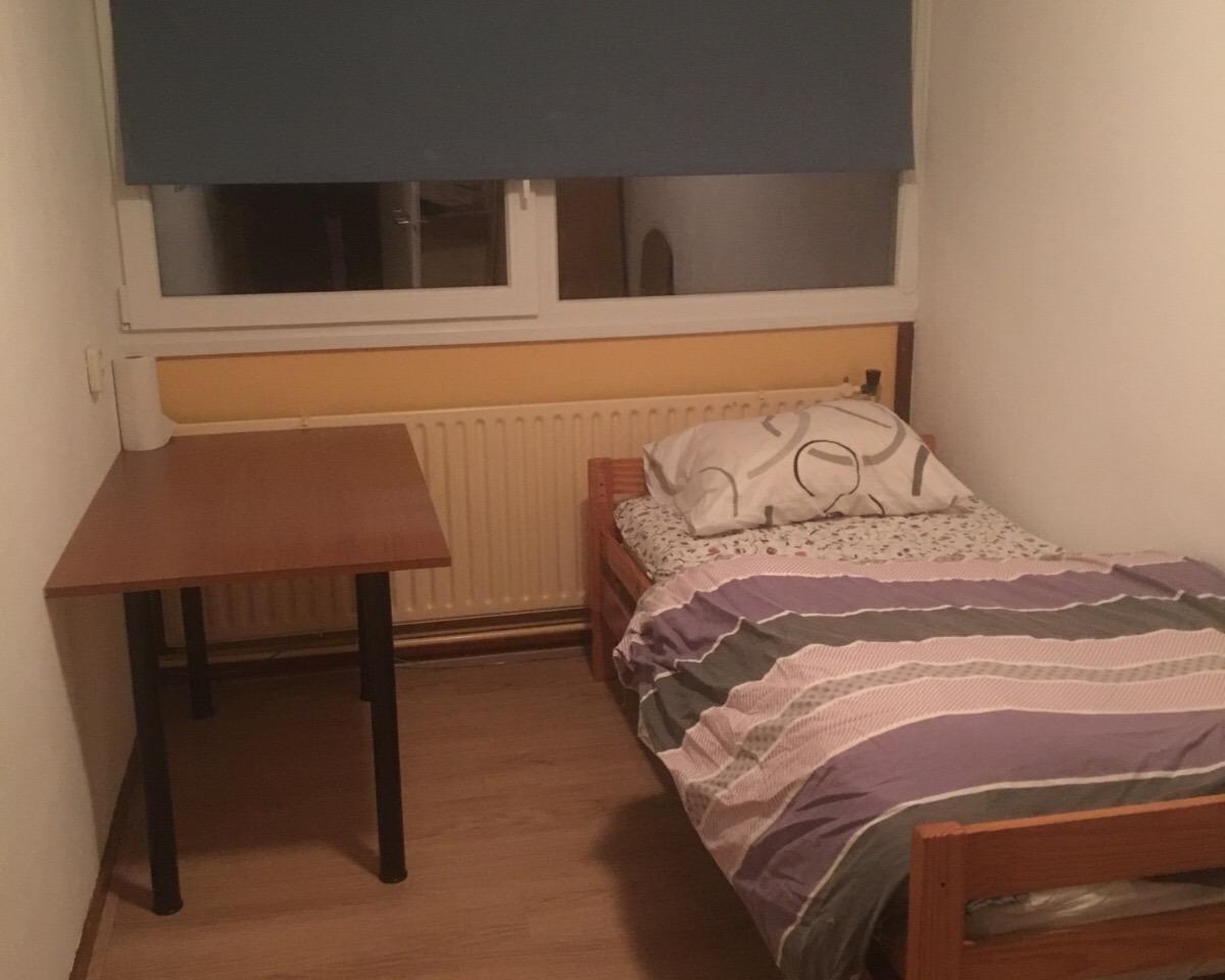 Kamer te huur in de Elsa Brandstromstraat in Haarlem