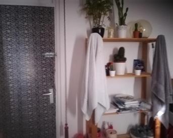 Kamer in Rotterdam, Sluiskreek op Kamernet.nl: Leuke kamer in gezellige buurt