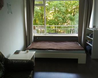 Kamer in Delft, Roland Holstlaan op Kamernet.nl: Room for rent in Delft
