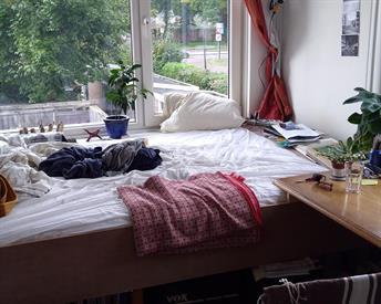 Kamer in Enschede, Ruischenborchstraat op Kamernet.nl: Leuk en leefbaar studentenhuis