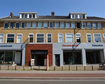 Kamer in Arnhem, Amsterdamseweg op Kamernet.nl: Amsterdamseweg (Zolder)