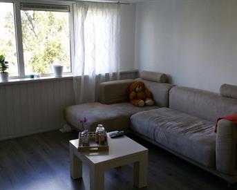 Kamer in Arnhem, Johan de Wittlaan op Kamernet.nl: 2 kamers voor 1 persoon