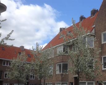 Kamer in Groningen, Ambonstraat op Kamernet.nl: mooie eigen woonkamer met aparte slaapkamer