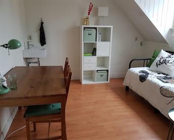 Kamer in Nijmegen, Nieuwe Ubbergseweg op Kamernet.nl: mooie kamer nabij centrum