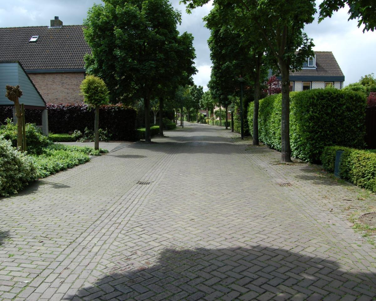 Zorgvlietstraat