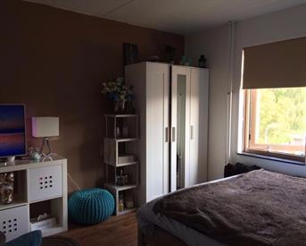 Kamer in Hengelo, Dennenbosweg op Kamernet.nl: Ruime kamer in gezellig huis