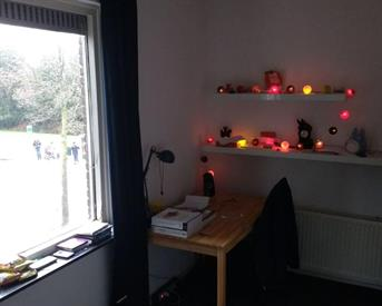 Kamer in Eindhoven, Franklin D Rooseveltlaan op Kamernet.nl: DUTCH ONLY kamer