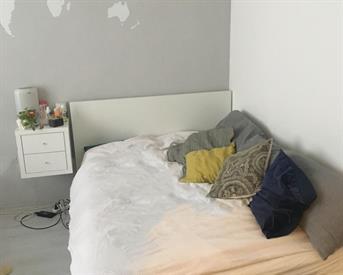 Kamer in Eindhoven, Runstraat op Kamernet.nl: Tijdelijke kamer, leuk studentenhuis