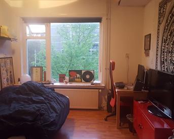 Kamer in Groningen, Ripperdalaan op Kamernet.nl: Huize Rolkoffer zoekt een tijdelijke huisgenoot