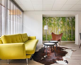 Kamer in Groningen, W.A. Scholtenstraat op Kamernet.nl: Gerenoveerd app met 4 kamers in het centrum