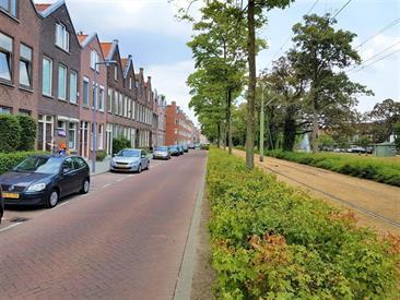 Kamer in Rotterdam, Boergoensevliet op Kamernet.nl: Gerenoveerde 3 slaapkamer dubbele bovenwoning
