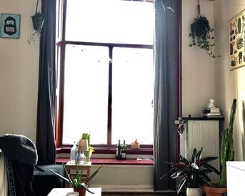 Kamer in Groningen, Schuitendiep op Kamernet.nl:  GEZOCHT: VROUWELIJKE HUISGENOOT (dutch only)