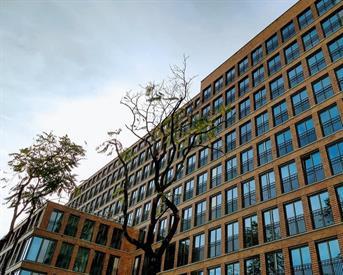 Kamer in Rotterdam, Van Vollenhovenstraat op Kamernet.nl: Nieuwe cityloft in Scheepvaartkwartier