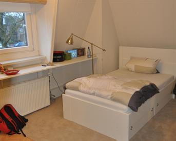 Kamer in Leeuwarden, Willem Lodewijkstraat op Kamernet.nl: Grote kamer met eigen keuken