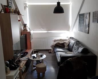 Kamer in Roermond, Herkenbosscherweg op Kamernet.nl: Appartement te huur aangeboden