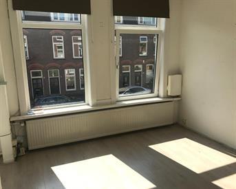 Kamer in Utrecht, Adelaarstraat op Kamernet.nl: Huize adelaar zoekt man!
