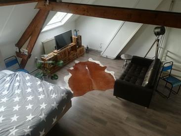 Kamer in Breda, Tramsingel op Kamernet.nl: Sfeervol appartement aan de singel