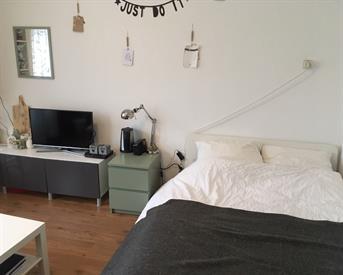 Kamer in Groningen, Venuslaan op Kamernet.nl: Tijdelijke huisgenoot gezocht (onderhuur)