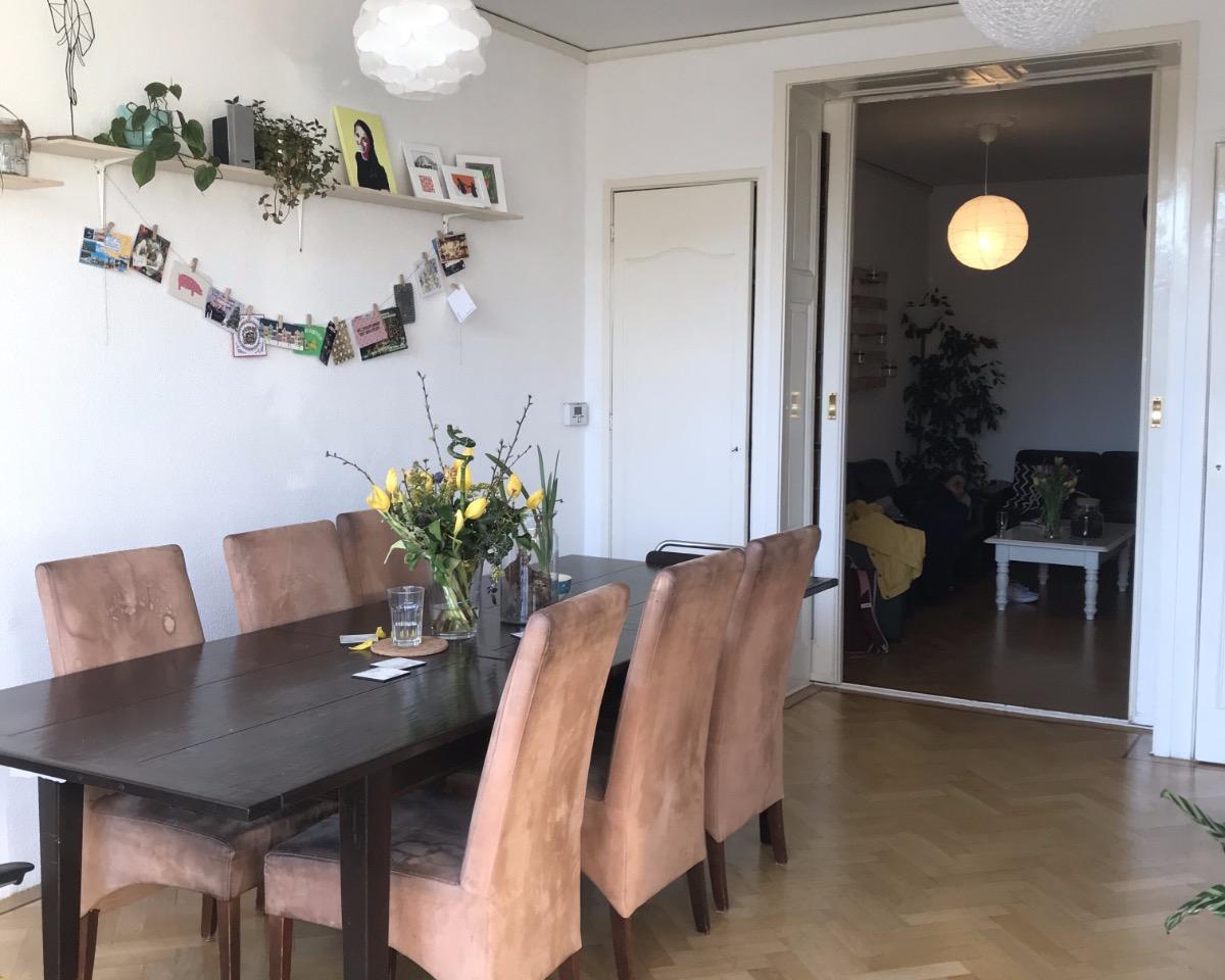 Kamer te huur aan de Schiedamseweg in Rotterdam