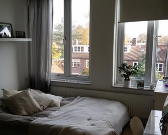 Kamer in Breda, Graaf Hendrik III laan op Kamernet.nl: Lovely room close to city center