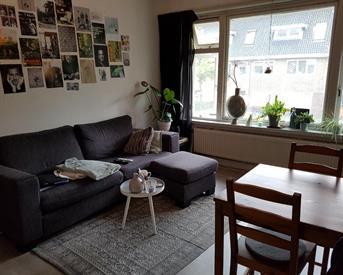 Kamer in Groningen, Korreweg op Kamernet.nl: Tijdelijke kamer op de Korreweg!