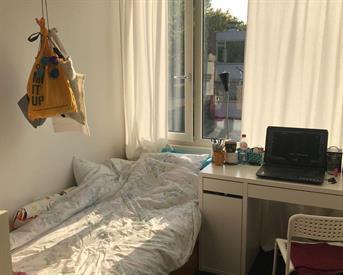 Kamer in Breda, Jan van den Domstraat op Kamernet.nl: Kamer 10m2 in meidenstudentenhuis