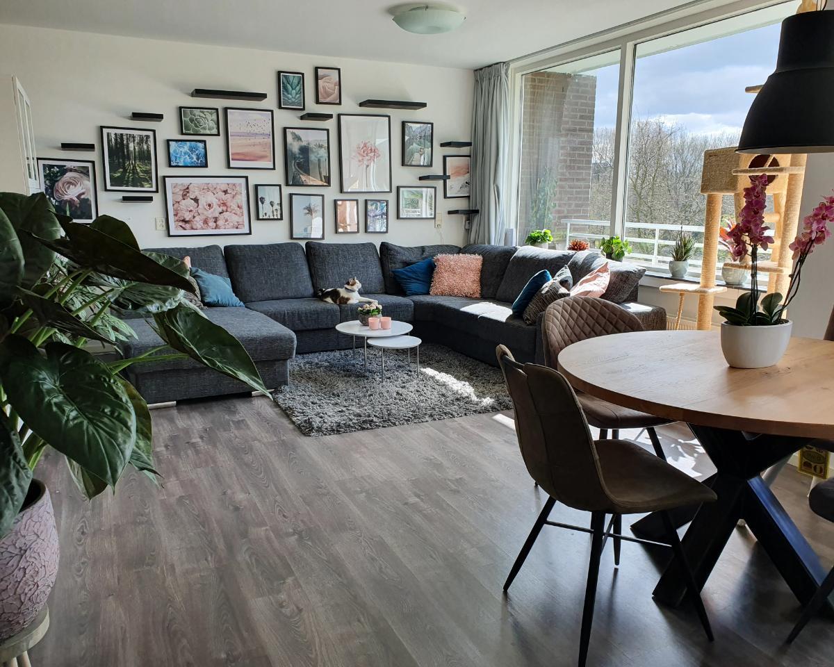 Kamer te huur aan de Populierendreef in Voorburg