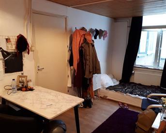 Kamer in Leiden, Stille Rijn op Kamernet.nl: Nieuwe vrouwelijke huisgenoot gezocht!
