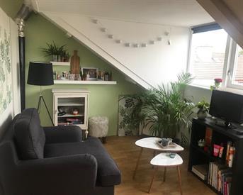 Kamer in Groningen, Venuslaan op Kamernet.nl: Grote kamer in een leuk studentenhuis