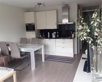 Kamer in Den Haag, Gevers Deynootweg op Kamernet.nl: New Apartment