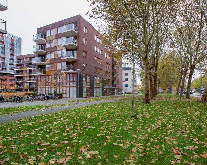 Kamer te huur in de Koningslaan in Rotterdam