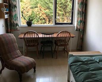 Kamer in Ede, Ariensweg op Kamernet.nl: nette kamer op eerste verdieping bij het station