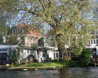 Kamer in Leiden, Haagweg op Kamernet.nl: Studio met royaal dakterras nabij centrum