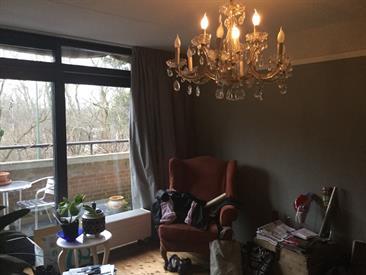 Kamer in Den Haag, Daal en Bergselaan op Kamernet.nl: Prachtige kamer met balkon uitkijkend over de bosjes van Pex