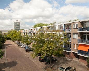 Kamer in Arnhem, Brekelenkampstraat op Kamernet.nl: gerenoveerd appartement met 3 ruime kamers