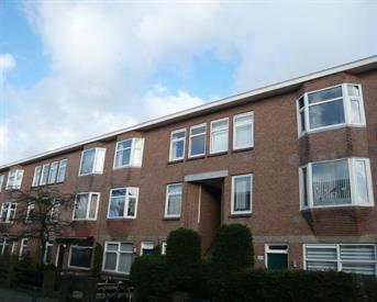 Kamer in Den Haag, Drebbelstraat op Kamernet.nl: Per direct studentenkamer te huur